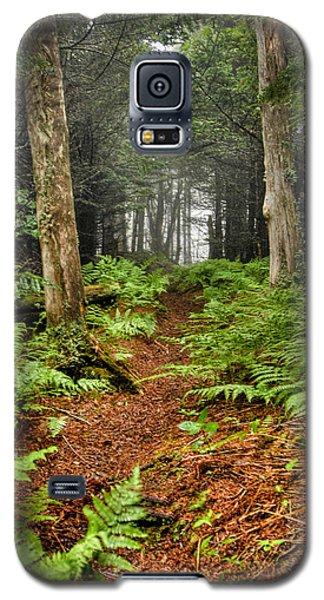 Path In The Ferns Galaxy S5 Case