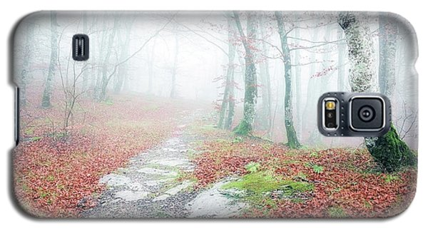 Path In The Forest Galaxy S5 Case