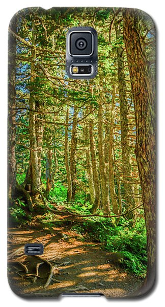 Path In The Trees Galaxy S5 Case