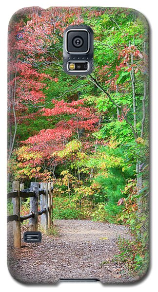 Path In The Woods Galaxy S5 Case