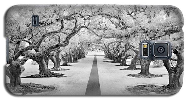 Path Of Dreams  Galaxy S5 Case
