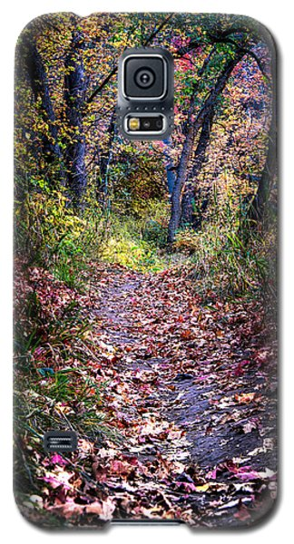 Path Of Leaves Galaxy S5 Case