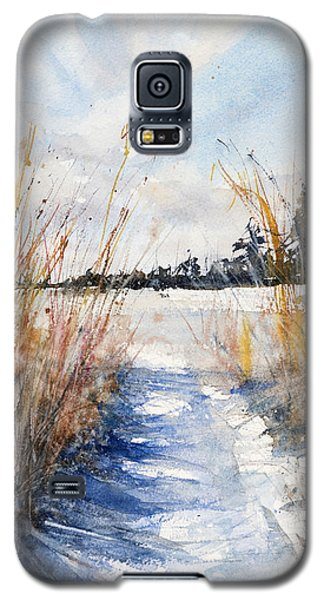 Path Shadows In The Way Back Galaxy S5 Case by Judith Levins