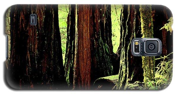 Path Through The Forest Edge . 7d5432 Galaxy S5 Case