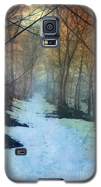 Path Through The Woods In Winter At Sunset Galaxy S5 Case