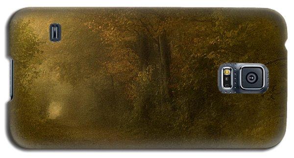 Path To Autumn Galaxy S5 Case by Richard Cummings