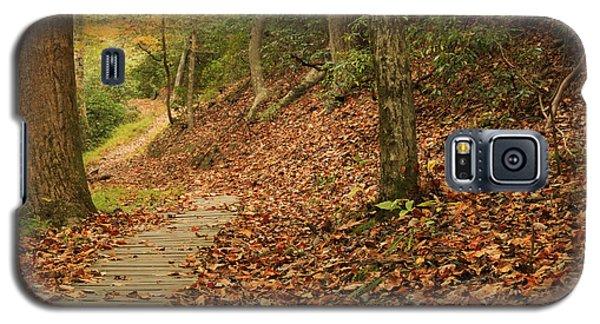Path To Autumn Galaxy S5 Case