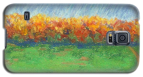 Path To Autumn Trees Galaxy S5 Case