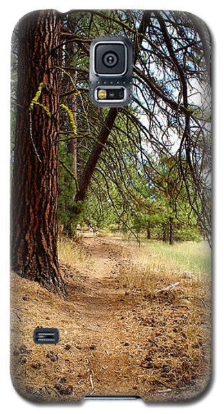 Path To Enlightenment 2 Galaxy S5 Case