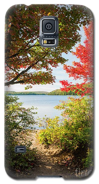 Galaxy S5 Case featuring the photograph Path To The Lake by Elena Elisseeva