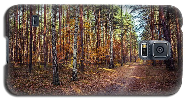 Pathway In The Autumn Forest Galaxy S5 Case