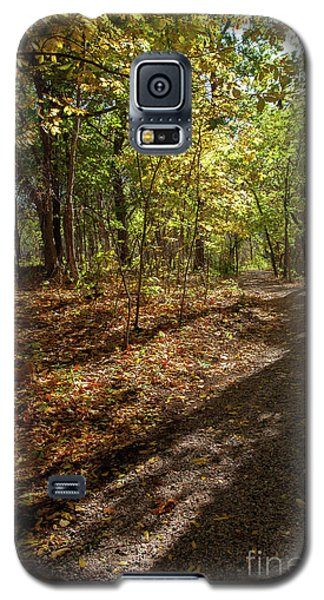 Galaxy S5 Case featuring the photograph Pathways In Fall by Iris Greenwell