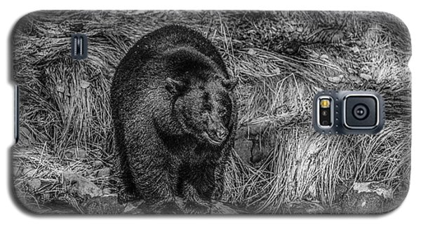 Patient Black Bear Galaxy S5 Case