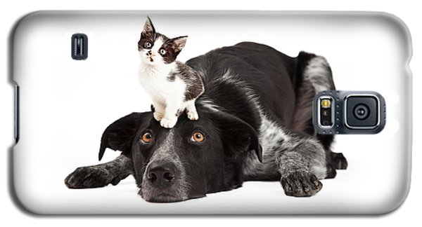 Patient Border Collie With Little Kitten On Head Galaxy S5 Case