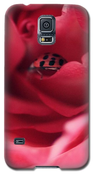 Patient Lady Galaxy S5 Case by The Art Of Marilyn Ridoutt-Greene