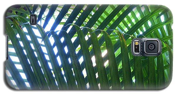 Patterned Palms Galaxy S5 Case