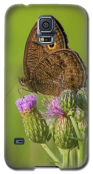 Galaxy S5 Case featuring the photograph Pauper's Throne by Bill Pevlor