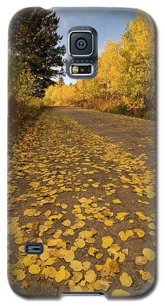 Galaxy S5 Case featuring the photograph Paved In Gold by Steve Stuller