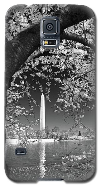 Galaxy S5 Case featuring the photograph Peace And Harmony by Mitch Cat