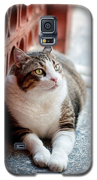 Galaxy S5 Case featuring the photograph Peace by Laura Melis