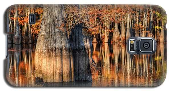 Peaceful Autumn Afternoon Galaxy S5 Case by Ester  Rogers