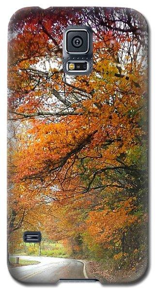 Peaceful Autumn Road Galaxy S5 Case