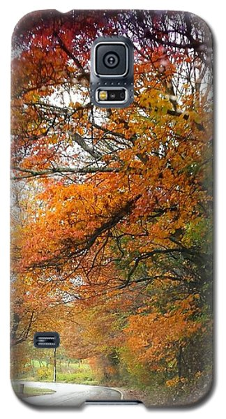Peaceful Autumn Road Galaxy S5 Case