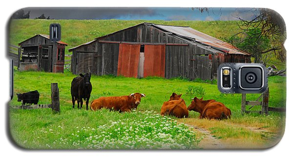 Peaceful Cows Galaxy S5 Case by Harry Spitz