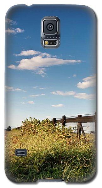 Peaceful Grazing Galaxy S5 Case