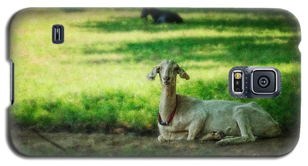 Peaceful Pasture Galaxy S5 Case