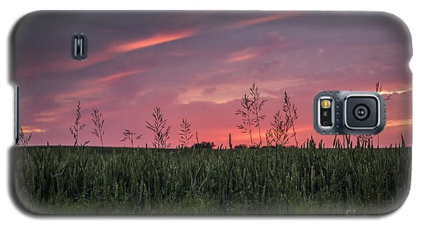 Peaceful Sunset Galaxy S5 Case