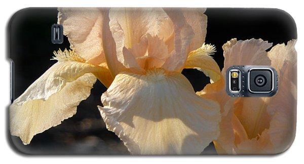 Peach Bearded Iris Galaxy S5 Case