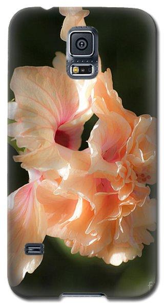 Peach Bliss Galaxy S5 Case