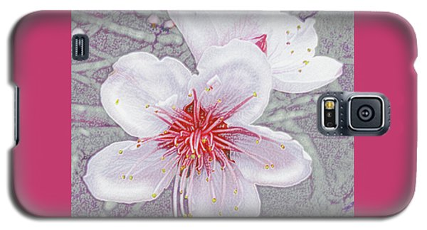 Peach Blossoms Galaxy S5 Case by Jane Schnetlage