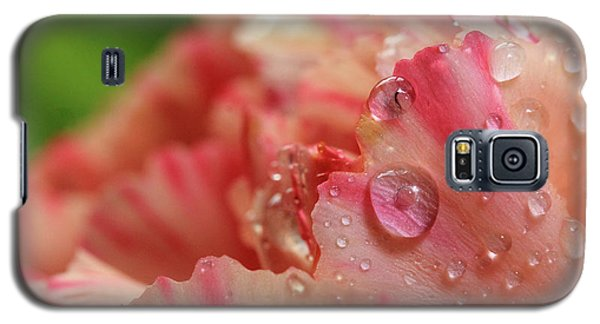 Peach And Pink Carnation Petals Galaxy S5 Case