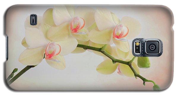 Peach Orchid Spray Galaxy S5 Case