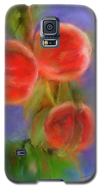 Peachy Keen Galaxy S5 Case by Colleen Taylor
