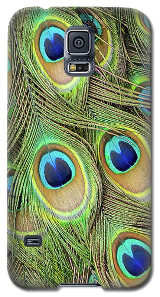 Living Peacock Abstract Galaxy S5 Case