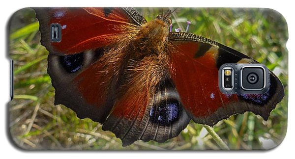 Galaxy S5 Case featuring the photograph Peacock Butterfly by Jean Bernard Roussilhe