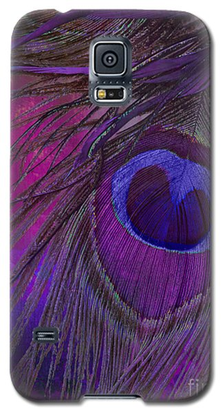 Peacock Candy Purple  Galaxy S5 Case by Mindy Sommers