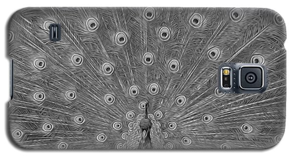 Peacock Fanfare - Black And White Galaxy S5 Case by Diane Alexander