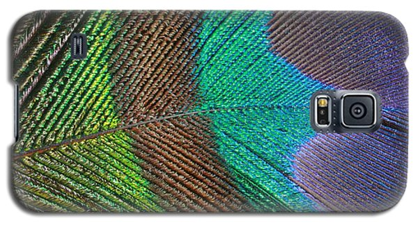 Peacock Feather Close Up Galaxy S5 Case