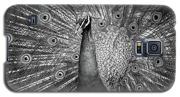 Peacock In Black And White Galaxy S5 Case