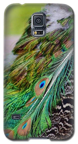 Peacock Galaxy S5 Case