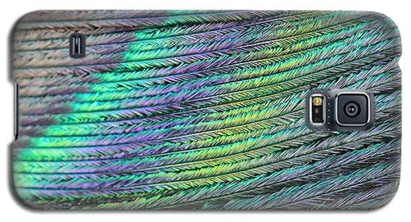 Peacock Stripes Galaxy S5 Case