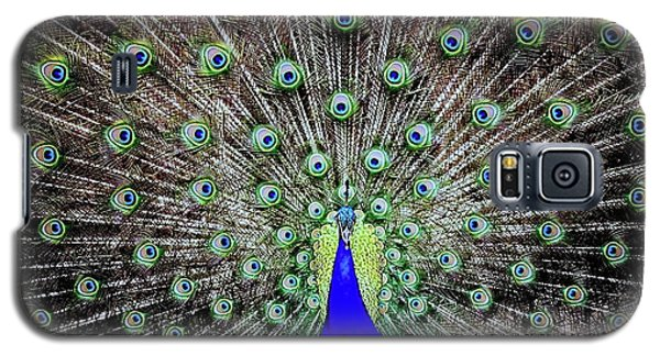 Galaxy S5 Case featuring the photograph Peacock by Vivian Krug Cotton