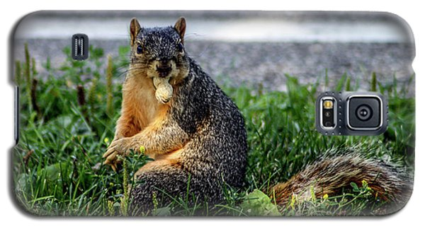 Galaxy S5 Case featuring the photograph Peanut by Joann Copeland-Paul