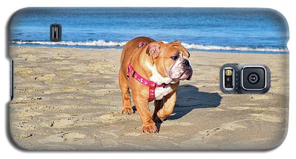 Peanut On The Beach Galaxy S5 Case
