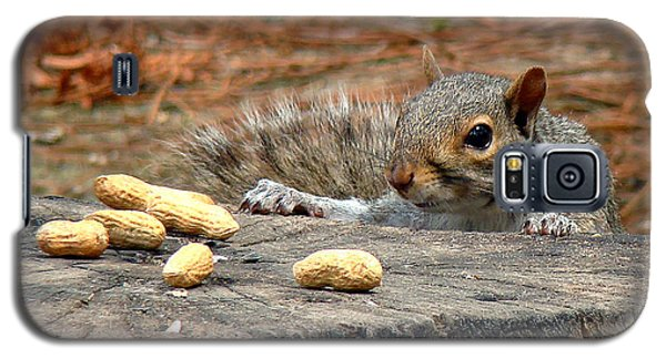 Peanut Surprise Galaxy S5 Case