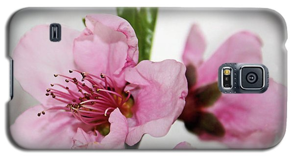 Galaxy S5 Case featuring the photograph Plum Blossom by Kristin Elmquist